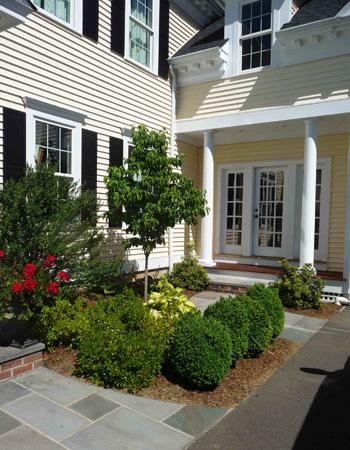 Christensen landscape services landscape installation for Low maintenance foundation shrubs