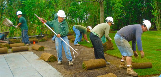 Maintenance Services - Christensen Landscape Services - Landscape Maintenance